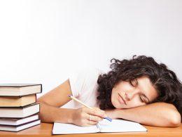 Keine Panik vor der Hausarbeit – so gehst du vor!