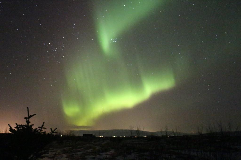 Polarlichter in Island (in der Nähe von Selfoss) am 8. März 2016 © J.K.
