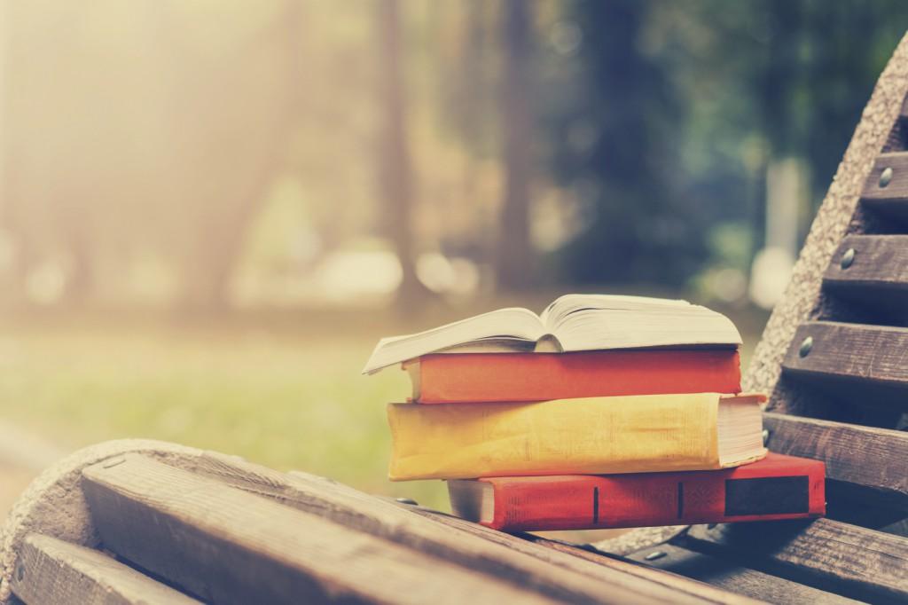 Tolle Frühlingsaktivitäten - Lesen im Park