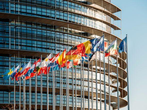 Europawahl 2019 – alles was du wissen musst